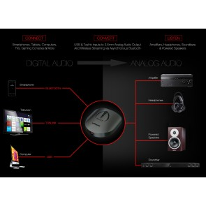 Audioquest Beetle, D/A Wandler mit Bluetooth